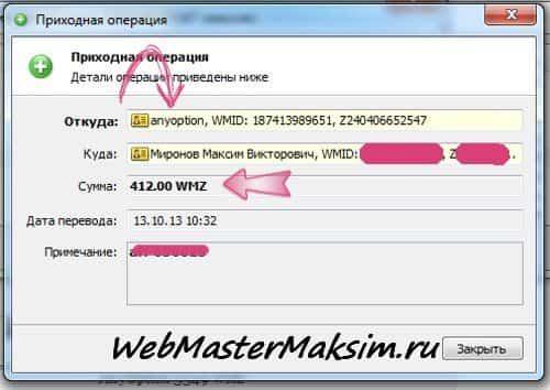 AnyOption 412 WMZ