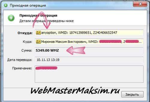 AnyOption 5349 WMZ