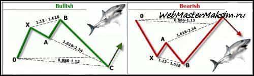 Модель Акула