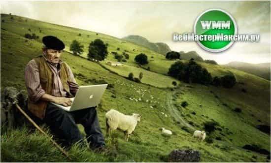 Советник Profiter - пастух для открытых ордеров в МетаТрейдере 4