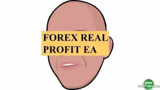Forex Real Profit EA обзор советника Форекс