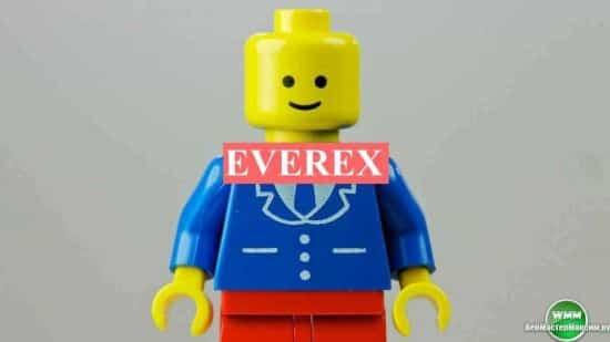 Советник для скальпинга Everex FX Elite – ваш элитный советник