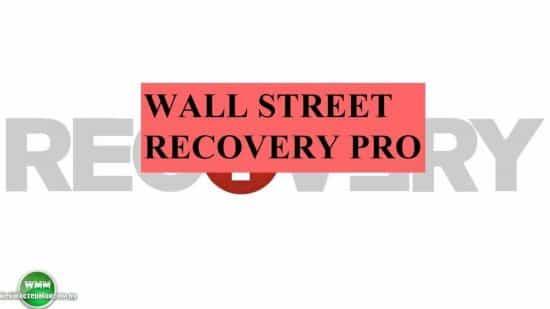 Wall Street Recovery Pro – советник, который входит в очень примечательный пакет