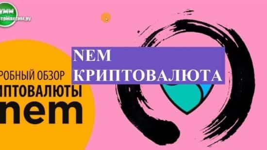 Nem криптовалюта (XEM). История, общие сведения, перспективы