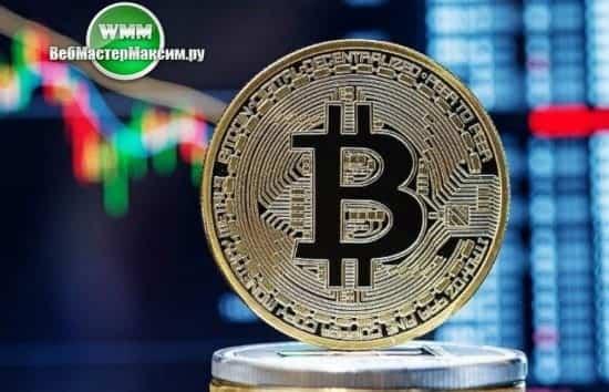 1 сфера криптовалют